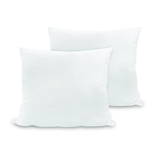 BioPedic Luxurious 28-by-28 Inch Euro Square Pillows, 2-Pack