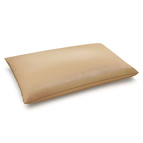 BioPEDIC Copper Pillowcase & Pillow, Jumbo, Taupe, 2 Piece