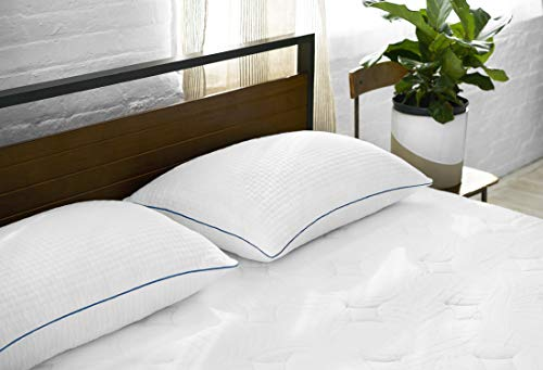 Sleep Innovations Premium Shredded Gel Memory Foam Pillows 2 Pack, King...
