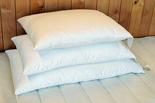 Holy Lamb Organics Wool Bed Pillow - Standard - Medium Fill
