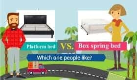 Platform bed vs box spring bed - Infographic