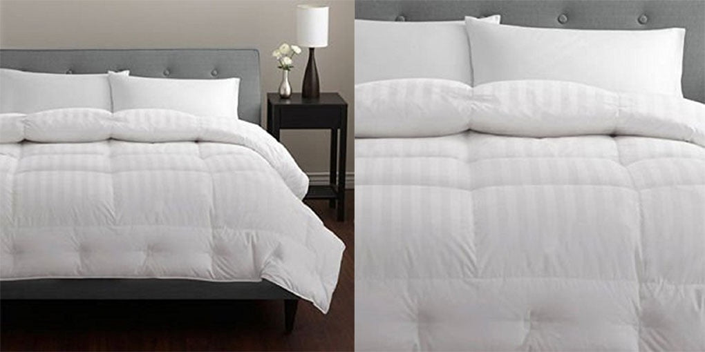 Pacific Coast 500 Thread count Down Comforter Review